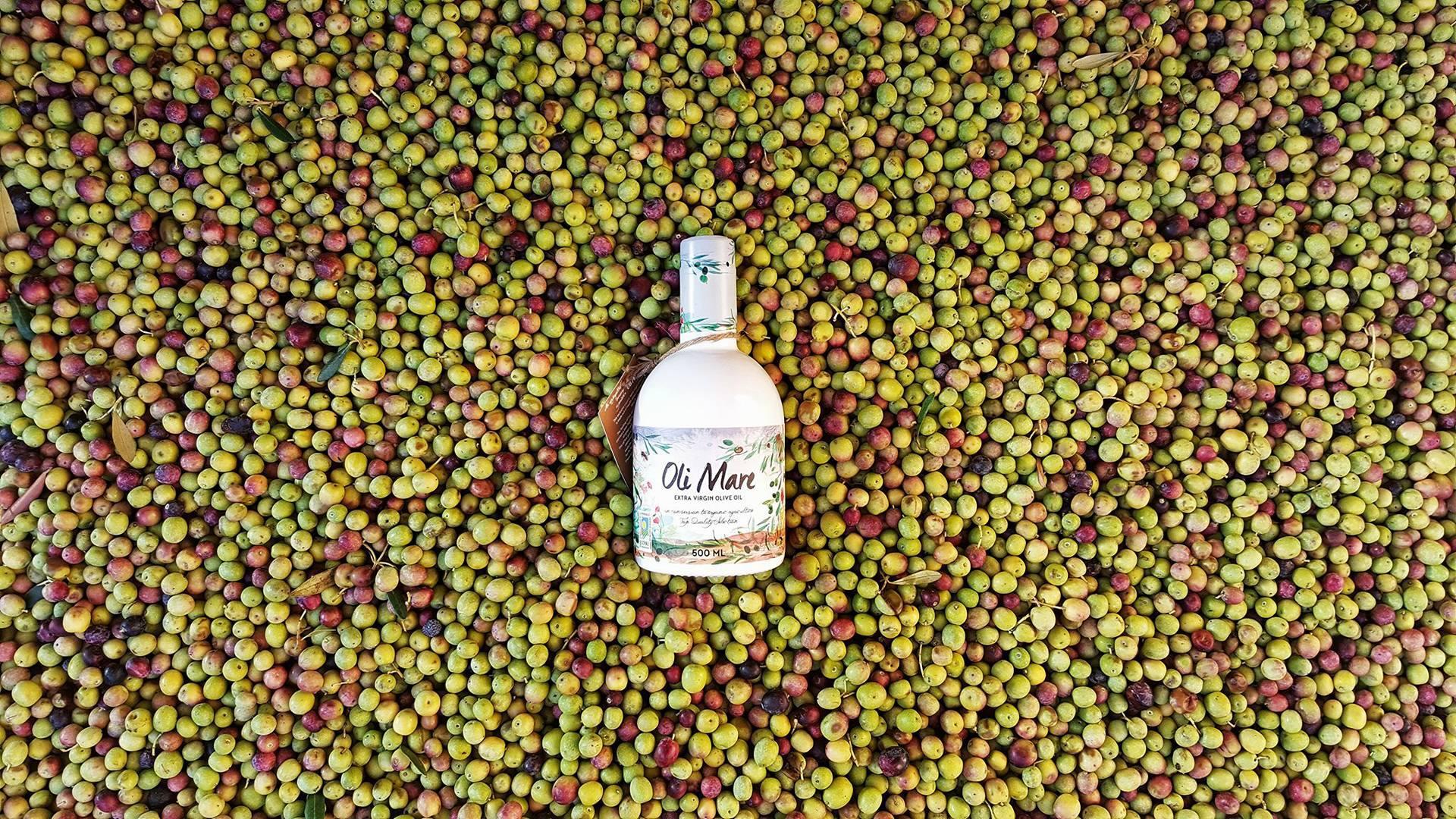 Oli Mare Ecològic. olives